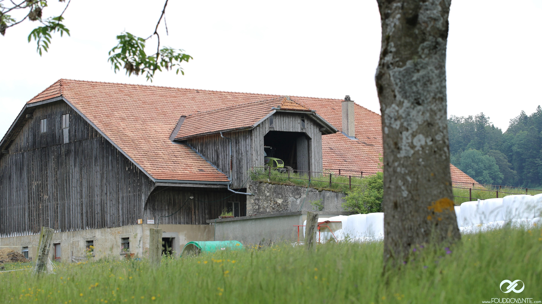 Farmer Watchmaker actual Jura (6)